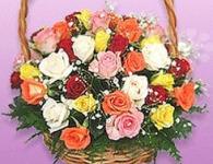 Donáška kvetov Prešov